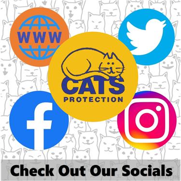 Check Out Our Socials