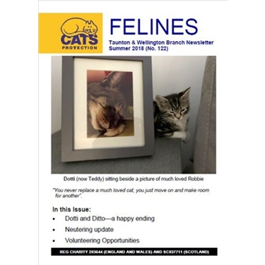 Felines Newsletter Summer 2018