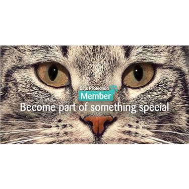 Local Membership