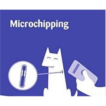 Micro chipping Info