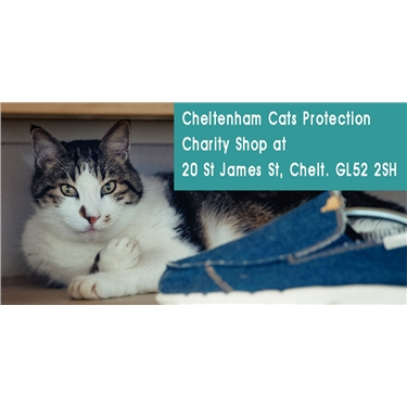 Appeal - volunteers urgently needed to help in our Cheltenham charity shop