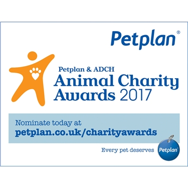 Nominations are closing soon for the Animal Charity Awards