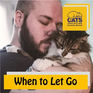 Cat Care: When to let go