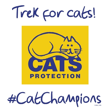 Help us help even more cats with the Thames Bridges Trek!