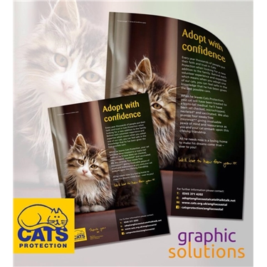 A4 Posters and leaflets