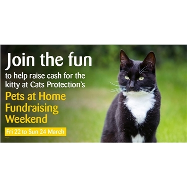 Cats Protection three-day fundraising event in Pets at Home stores
