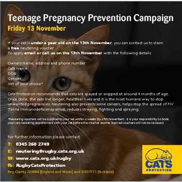 Teenage Pregnancy Prevention Campaign