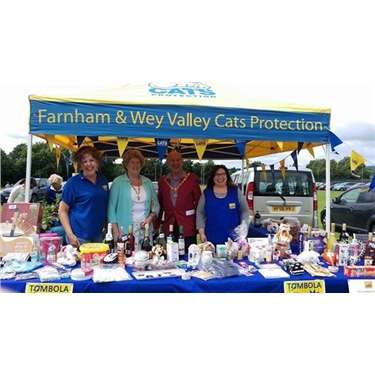 A Great Day at the Wrecclesham Village Fete