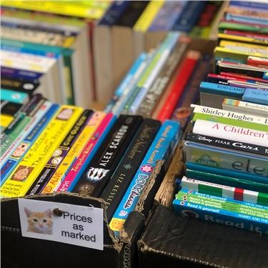 A Stormy Bookstall !
