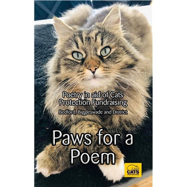 Paws for a Poem