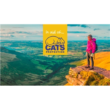 Take on the beautiful Pen y Fan summit for Cats Protection