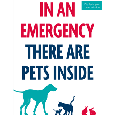 Encouraging owners to make an emergency pet plan during the coronavirus (COVID-19) crisis