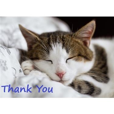 Leesland ParkFest - Thank You