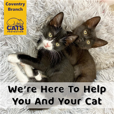 We're here to help you and your cat