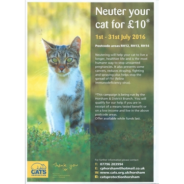July 2016 Neutering Campaign