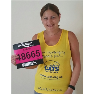 Running the Great North Run for Cats Protection