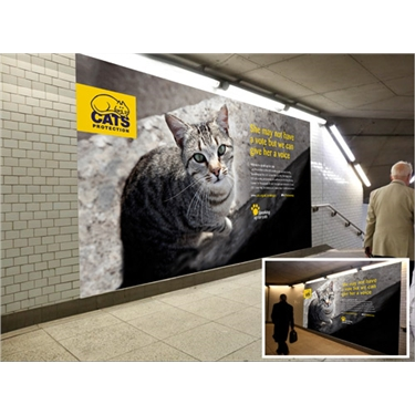 Cats Protection takes over Westminster tube station