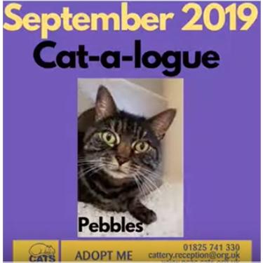September Cat-a-Logue