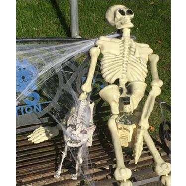 Halloween event raises £997 for the Adoption Centre