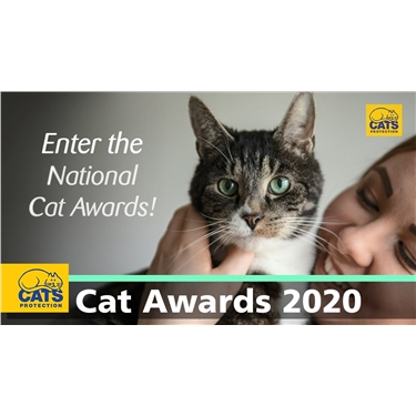 National Cat Awards 2020 - nominations now open!