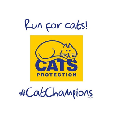 Running 200km to Raise Funds for Canterbury Cats Protection