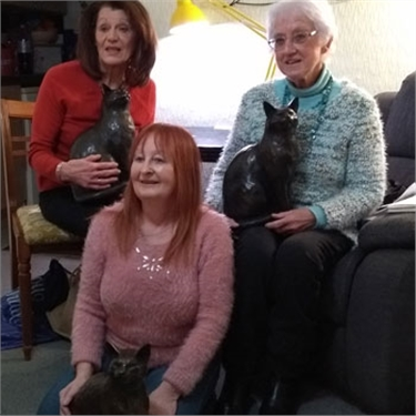 Volunteers celebrate over 100 years of cat care work