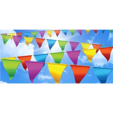 NEXT EVENTS - Bridgemary Carnival Sat 20 July & market stall Sat 27 July