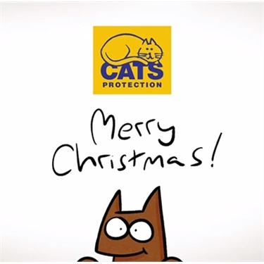Are you looking for the purrfect gifts this Christmas?