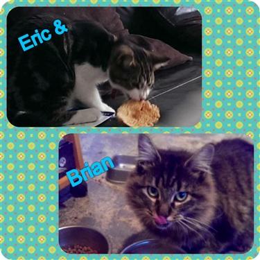 Brian & Eric