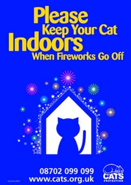 Remember, remember…your cat during fireworks season
