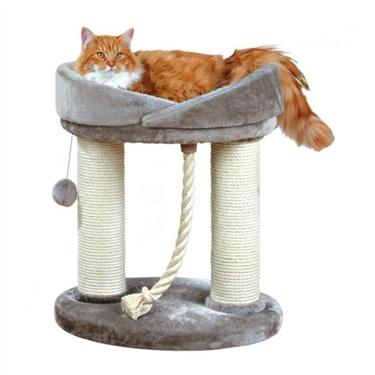 Indoor Life - Keeping your Indoor Cat Happy