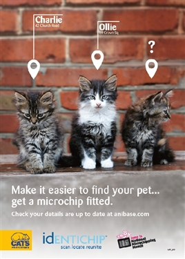 june is national microchipping month. Black Bedroom Furniture Sets. Home Design Ideas