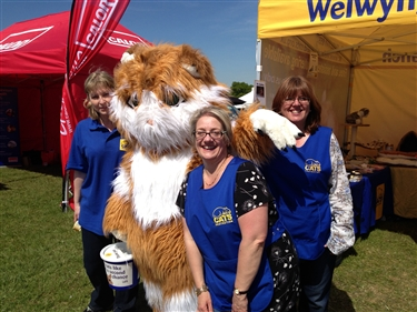 Herts Show 2013