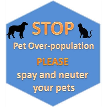 Help with Neutering Vouchers
