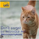 Glasgow Cats Protection Glasgow Branch Supports National Microchipping Month