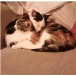 Monty & Poppy