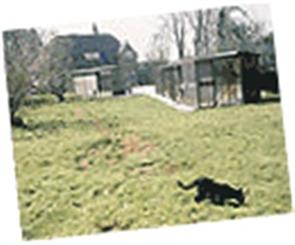 Haslemere shelter