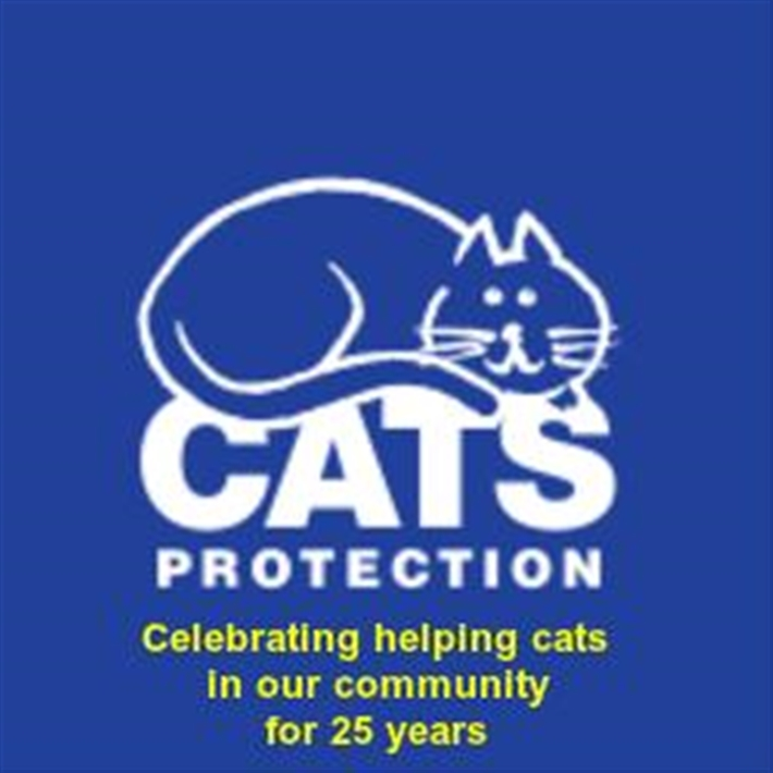 Celebrating helping cats in our community for 25 years