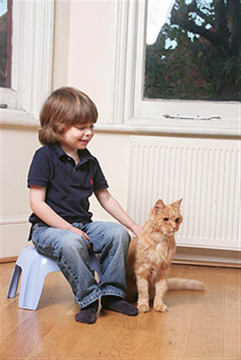 a boy and his ginger cat