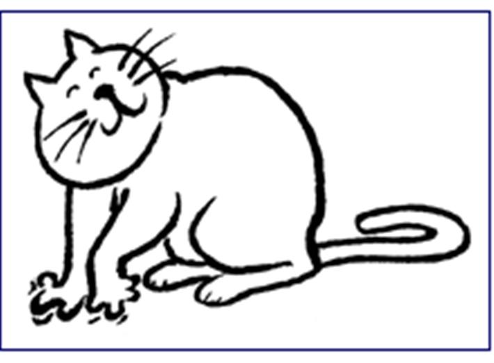 Cat kneading