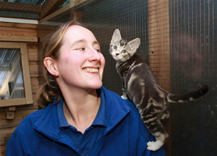 Happy kitten with happy volunteer
