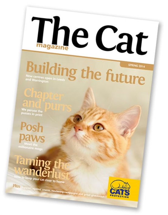 The Cat mag cover