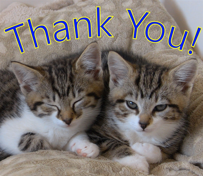 Thank_You_(for_Donation)26.jpg