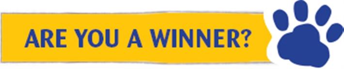 Winner button