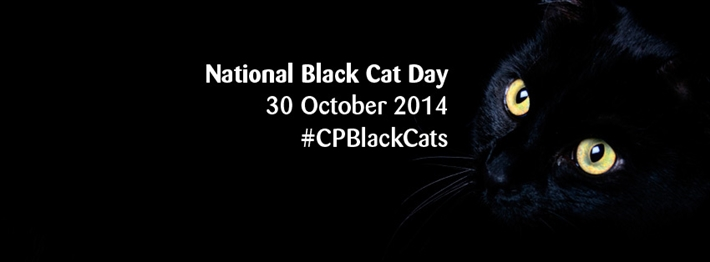 National Black Cat Day Banner 2014