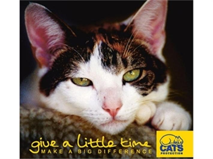 Cats Protection Birmingham Phone