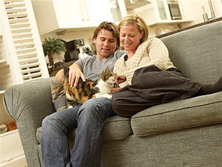Couple sitting with cat