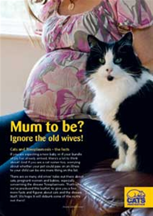 Pregnant Woman And Cats 84